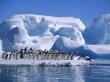antarktida12jpg.jpg