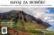 havaj-liberecjpg.jpg